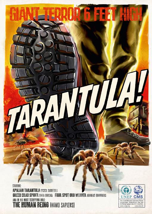 UNEP_tarantula_klein