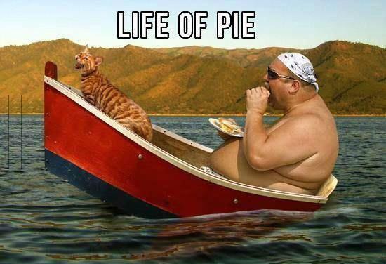 Life of Pi - Memes 11
