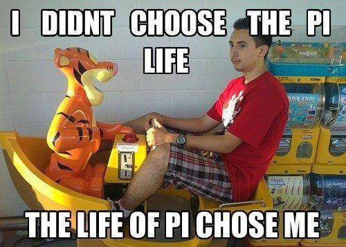 Life of Pi - Memes 17